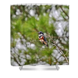 Belting Belted Shower Curtain by Al Powell Photography USA