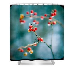 Berry Nice - Red Berries - Winter Frost Icy Red Berries - Gary Heller Shower Curtain by Gary Heller