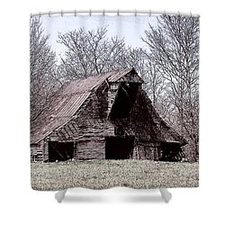 Better Days Shower Curtain by Bonnie Willis