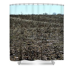 Between Sky And Field Shower Curtain by Joseph Yarbrough