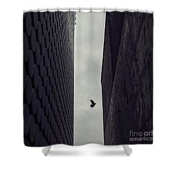 Between Worlds Shower Curtain by Andrew Paranavitana