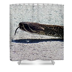 Beware Of Me Shower Curtain by Karen Wiles