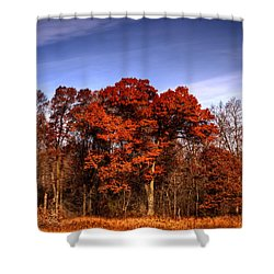 Big Red Shower Curtain by Thomas Young