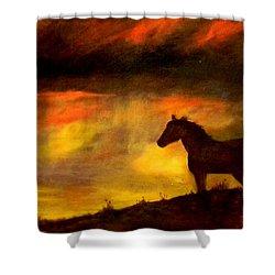 Big Sky Shower Curtain by Judie White