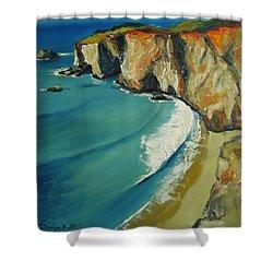 Big Sur Shower Curtain by Alexei Biryukoff