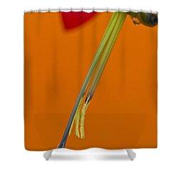 Bilbergia  Windii Detail Shower Curtain by Heiko Koehrer-Wagner