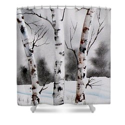 Birches Shower Curtain by Mohamed Hirji