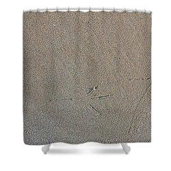 Bird Tracks Shower Curtain by Steven Ralser