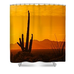 Birds In Silhouette Shower Curtain by Penny Lisowski