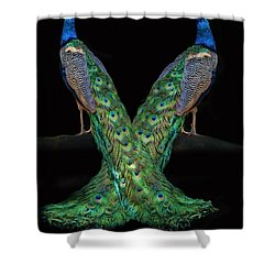 Birds Of A Feather Shower Curtain by Stephanie Laird