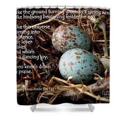 Birdsong From Inside The Egg Shower Curtain by Lainie Wrightson