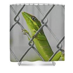 Bite Me Shower Curtain by Chrisann Ellis