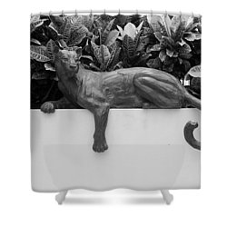 Black And White Cat Shower Curtain by Rob Hans