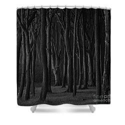 Black Forest Shower Curtain by Heiko Koehrer-Wagner