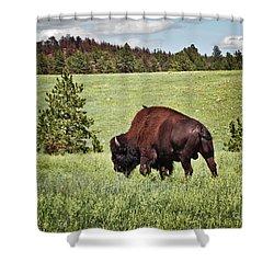 Black Hills Bull Bison Shower Curtain by Robert Frederick