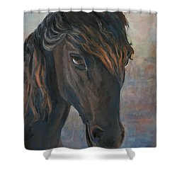 Black Horse Shower Curtain by Marco Busoni