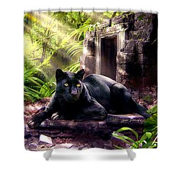 Black Panther Custodian Of Ancient Temple Ruins  Shower Curtain by Regina Femrite