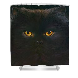 Black Persian Shower Curtain by Andrew Farley