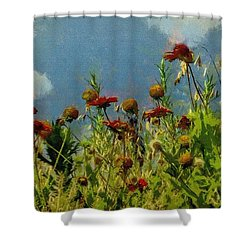 Blanketing The Sky Shower Curtain by Jeff Kolker