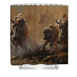 Blazing Thunder Shower Curtain by Mia DeLode