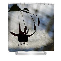 Bleeding Heart Bokeh Shower Curtain by Trish Tritz