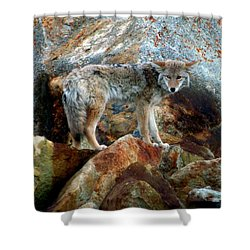 Blending In Nature Shower Curtain by Karen Wiles