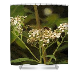 Blind Love Shower Curtain by Sherryl Lapping