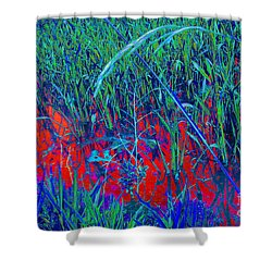 Bloody Battle Of New Orleans 1 Shower Curtain by Alys Caviness-Gober