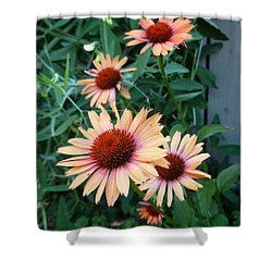Blooming Coneheads Shower Curtain by Lingfai Leung