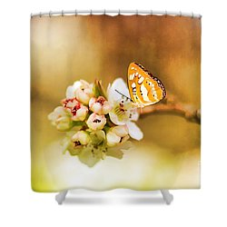 Blooms And Butterflies Shower Curtain by Darren Fisher