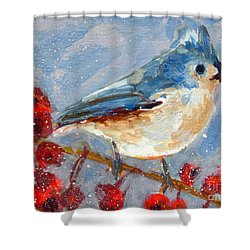 Blue Bird In Winter - Tuft Titmouse Modern Impressionist Art Shower Curtain by Patricia Awapara