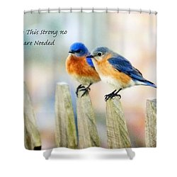 Blue Bird Love Notes Shower Curtain by Scott Pellegrin