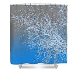 Blue Branches Shower Curtain by Carol Lynch