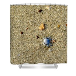 Blue Crab Shower Curtain by Leana De Villiers