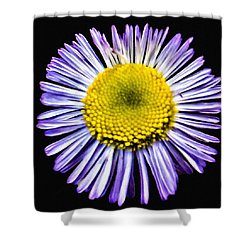 Blue Daisy Painting Shower Curtain by Bob and Nadine Johnston