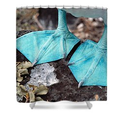Blue-footed Booby Feet Shower Curtain by Ron Sanford