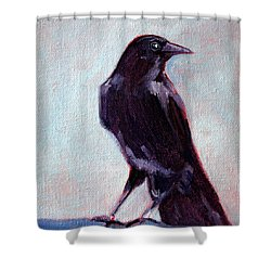 Blue Raven Shower Curtain by Nancy Merkle