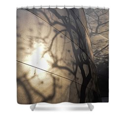 Blue Ribbon Garden 2 Shower Curtain by Gandz Photography