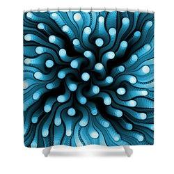 Blue Sea Anemone Shower Curtain by Anastasiya Malakhova
