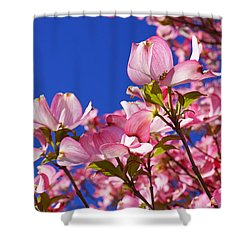 Blue Sky Art Prints Pink Dogwood Flowers Shower Curtain by Baslee Troutman