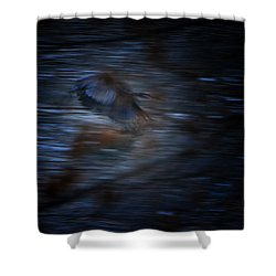 Blue Streak Shower Curtain by Robert McCubbin