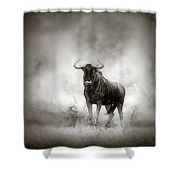 Blue Wildebeest In Rainstorm Shower Curtain by Johan Swanepoel