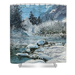 Blue Winter Shower Curtain by Mary Ellen Anderson