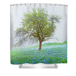 Bluebells Shower Curtain by Debra and Dave Vanderlaan