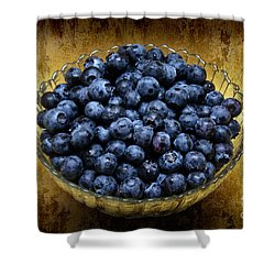 Blueberry Elegance Shower Curtain by Andee Design