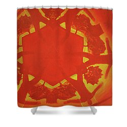 Boards Of Canada Geogaddi Album Cover Shower Curtain by David Rives