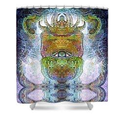 Bogomil Variation 15 Shower Curtain by Otto Rapp