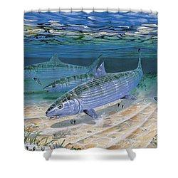 Bonefish Flats In002 Shower Curtain by Carey Chen