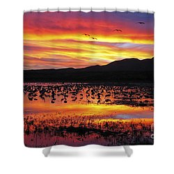 Bosque Sunset II Shower Curtain by Steven Ralser