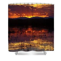 Bosque Sunset - Orange Shower Curtain by Steven Ralser